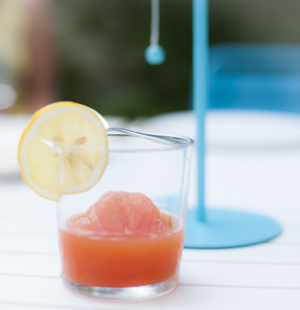 Campari-Orange-Sorbet - Goodnight